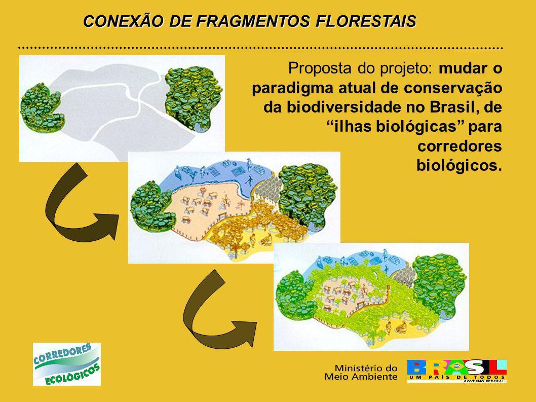 CONEXÃO DE FRAGMENTOS FLORESTAIS