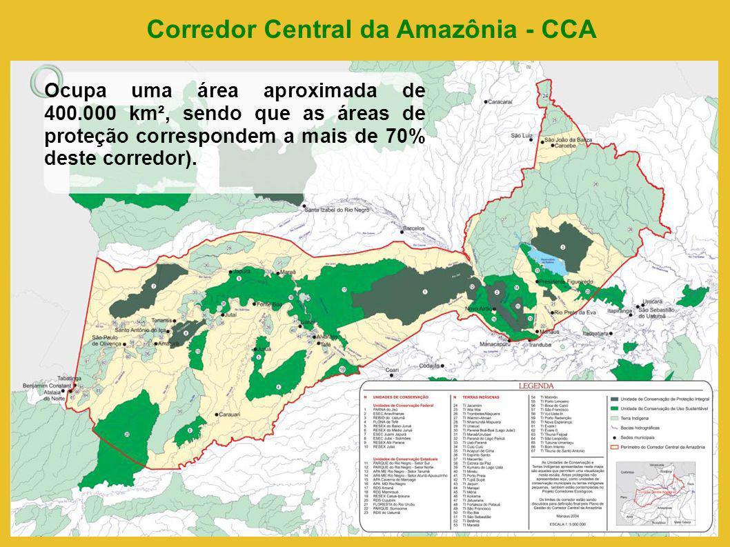 Corredor Central da Amazônia - CCA