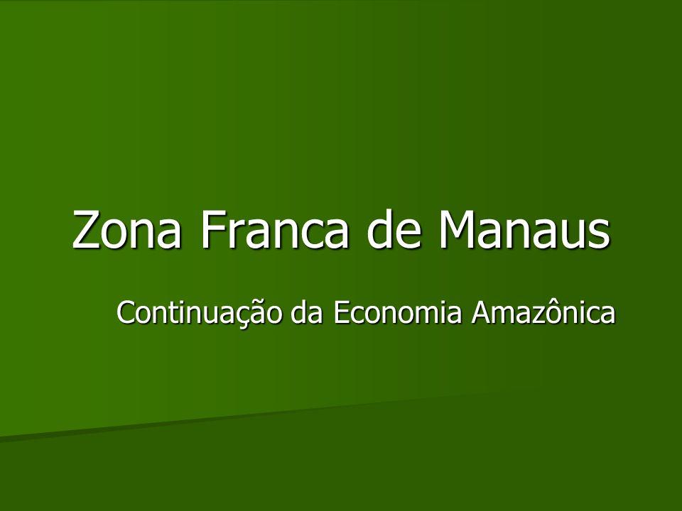 Continuação da Economia Amazônica