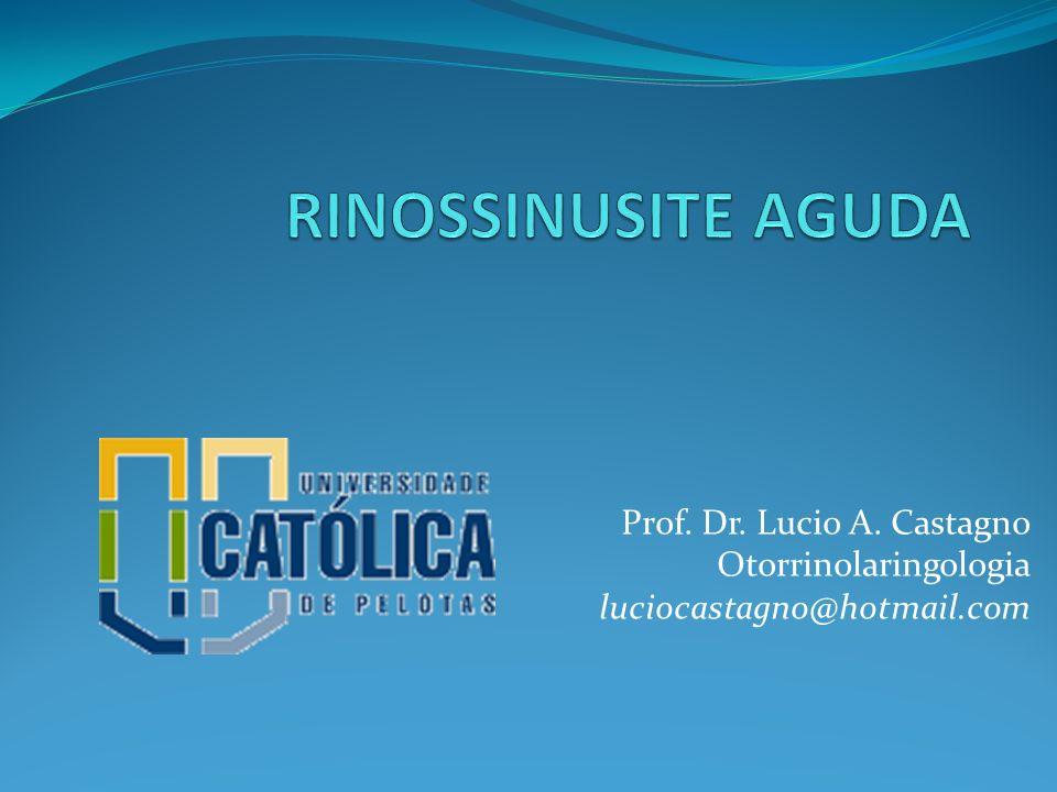 RINOSSINUSITE AGUDA Prof. Dr. Lucio A. Castagno Otorrinolaringologia