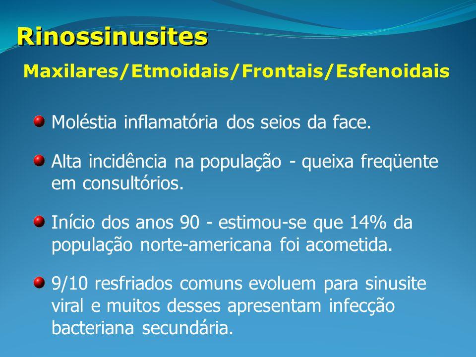 Maxilares/Etmoidais/Frontais/Esfenoidais