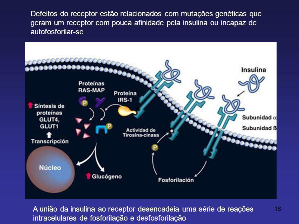 Defeitos do receptor estão relacionados com mutações genéticas que geram um receptor com pouca afinidade pela insulina ou incapaz de autofosforilar-se