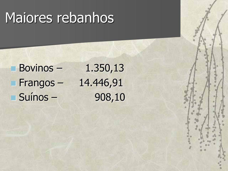 Maiores rebanhos Bovinos – 1.350,13 Frangos – 14.446,91