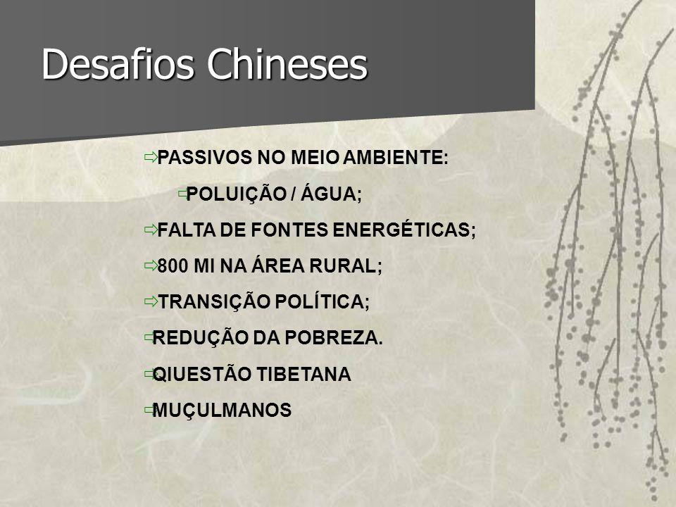 Desafios Chineses PASSIVOS NO MEIO AMBIENTE: POLUIÇÃO / ÁGUA;