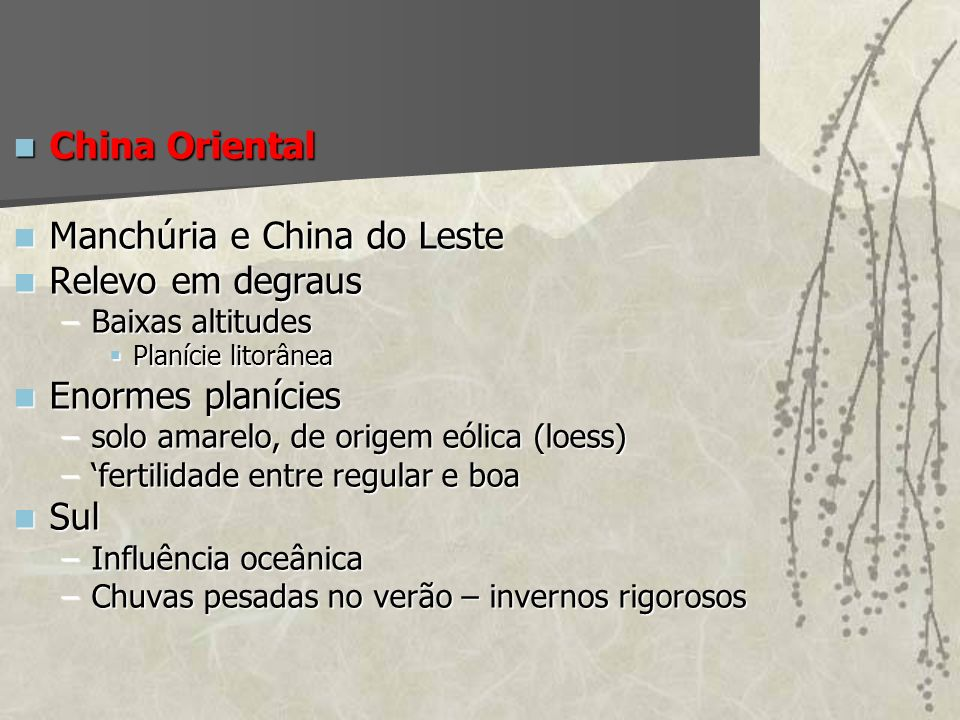 Manchúria e China do Leste Relevo em degraus