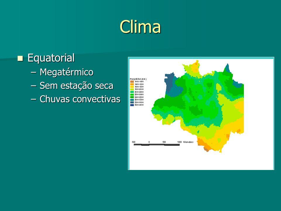 Clima Equatorial Megatérmico Sem estação seca Chuvas convectivas