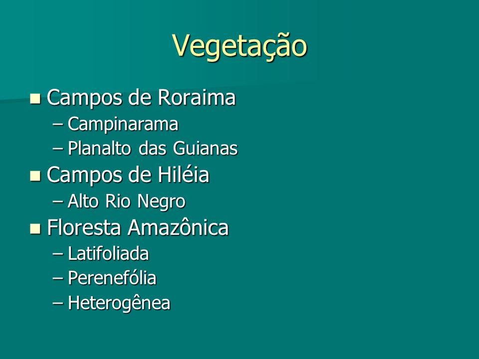 Vegetação Campos de Roraima Campos de Hiléia Floresta Amazônica