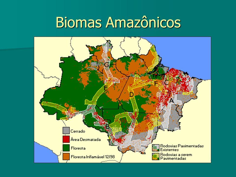 Biomas Amazônicos