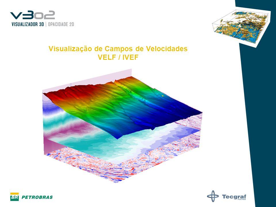 Visualização de Campos de Velocidades VELF / IVEF