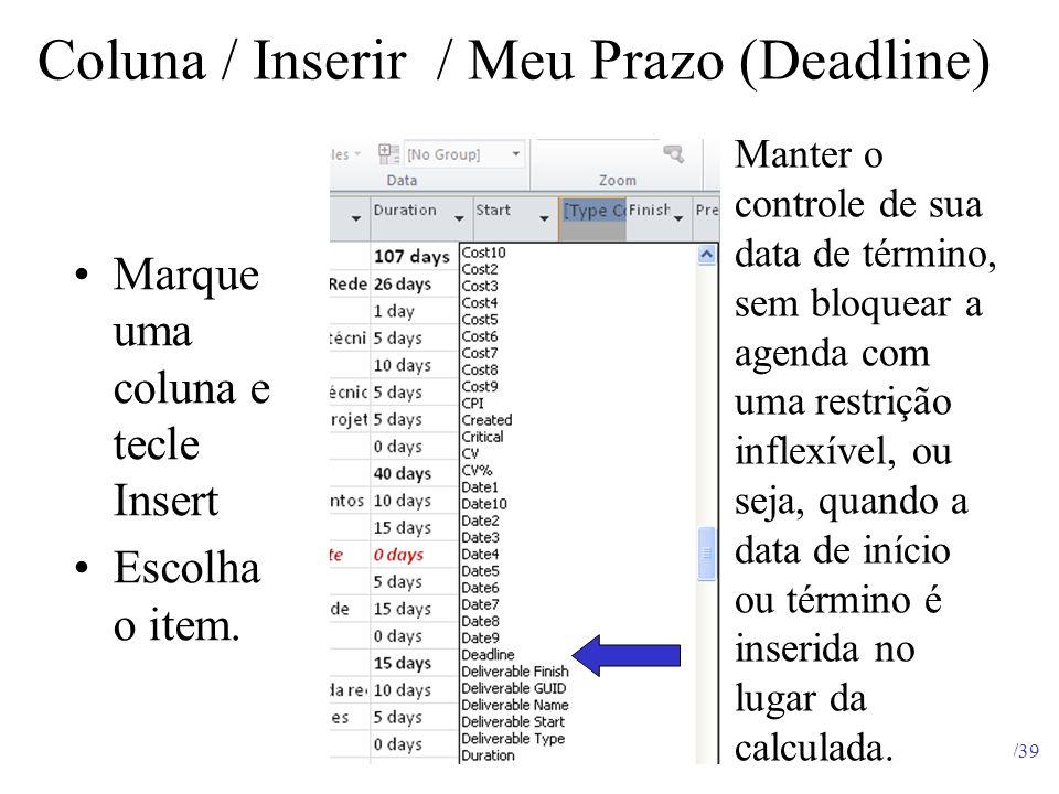 Coluna / Inserir / Meu Prazo (Deadline)