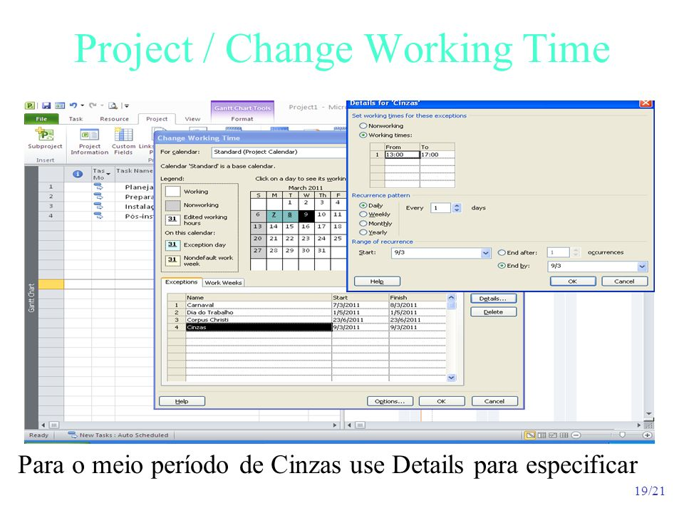 Project / Change Working Time