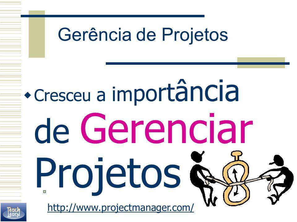 Gerência de Projetos Cresceu a importância de Gerenciar Projetos