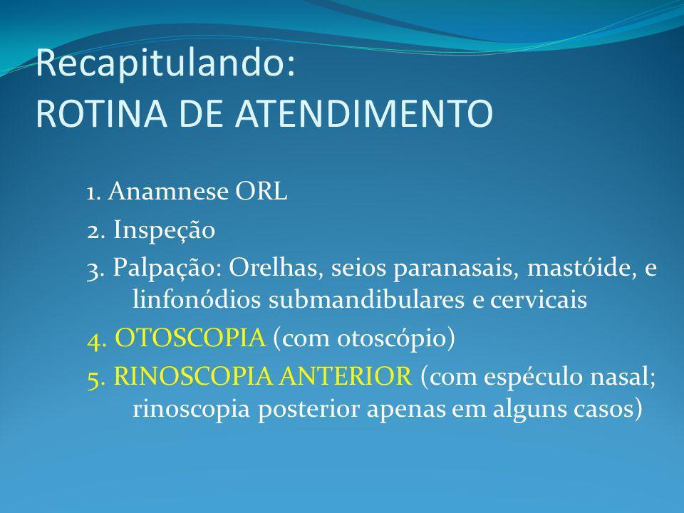 Recapitulando: ROTINA DE ATENDIMENTO