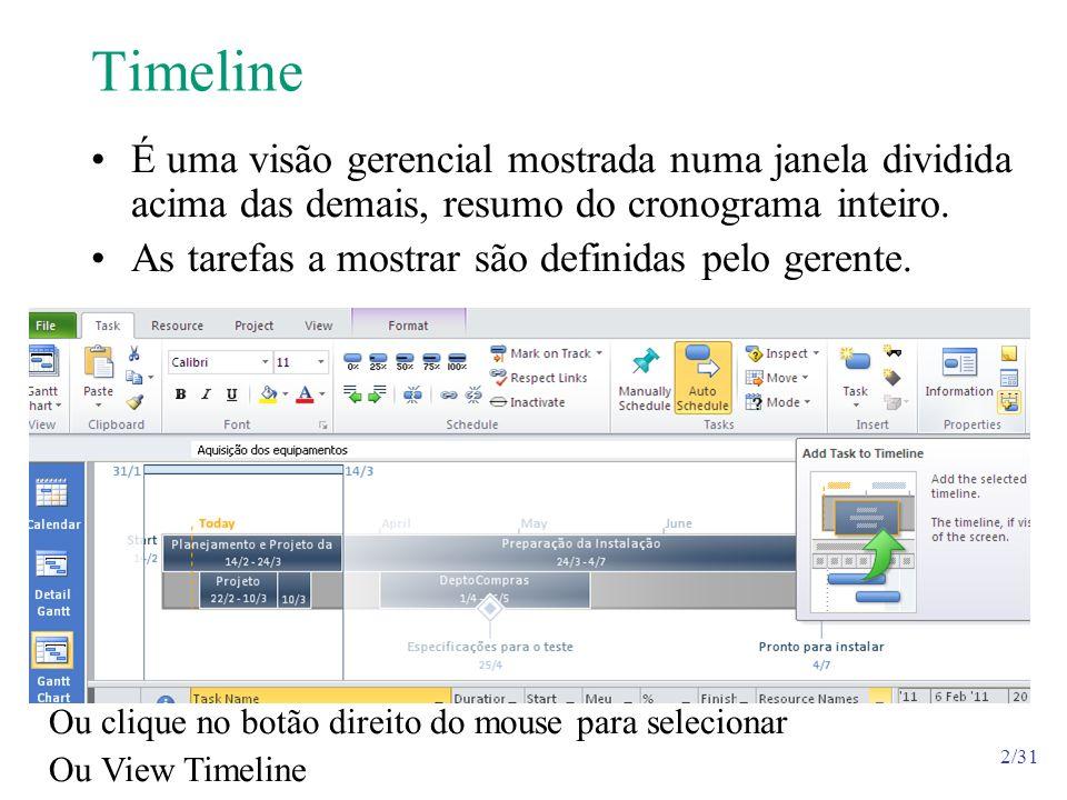 Timeline É uma visão gerencial mostrada numa janela dividida acima das demais, resumo do cronograma inteiro.