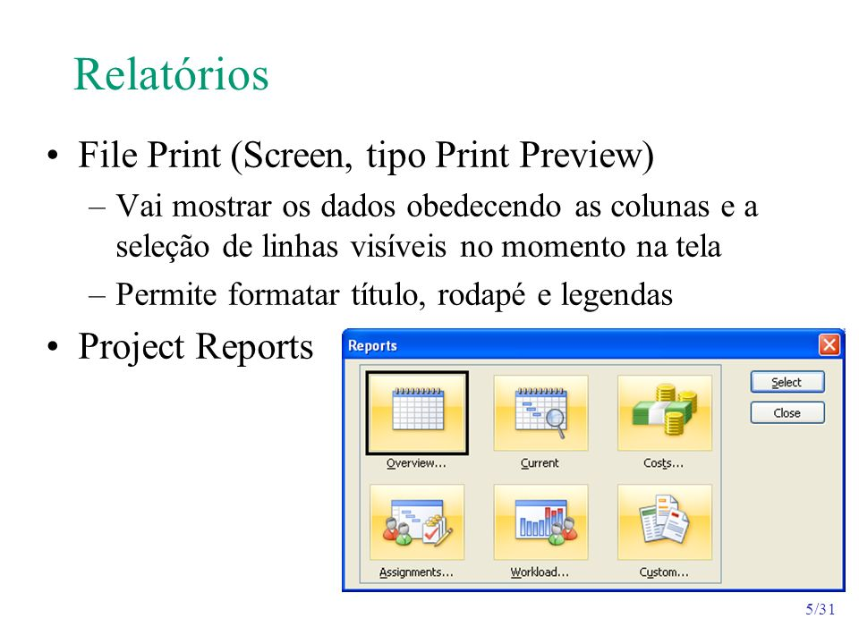 Relatórios File Print (Screen, tipo Print Preview) Project Reports