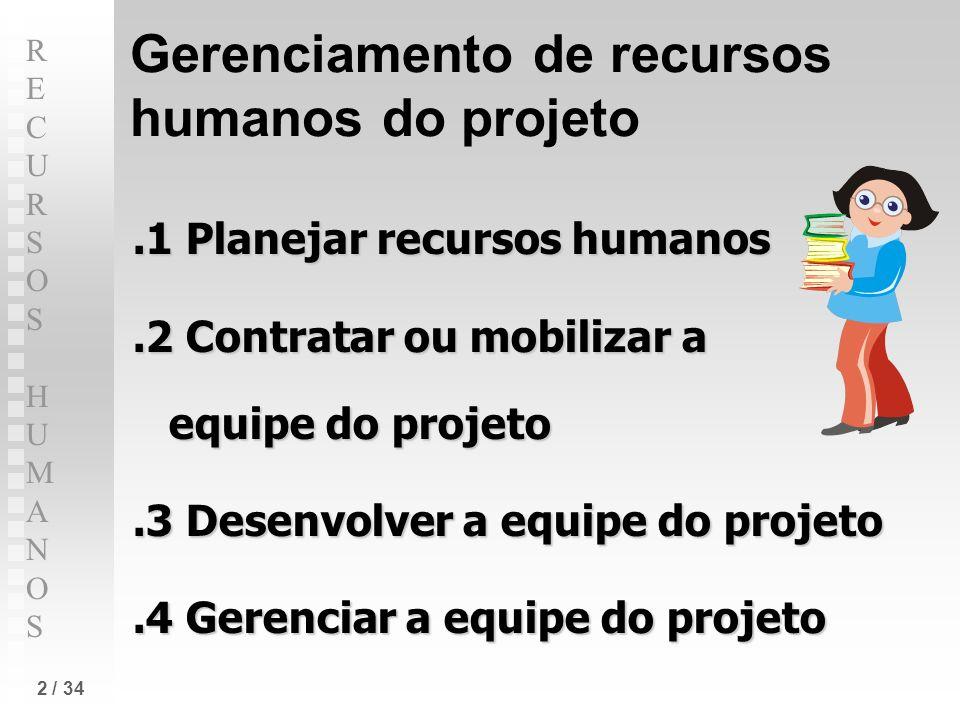 Gerenciamento de recursos humanos do projeto
