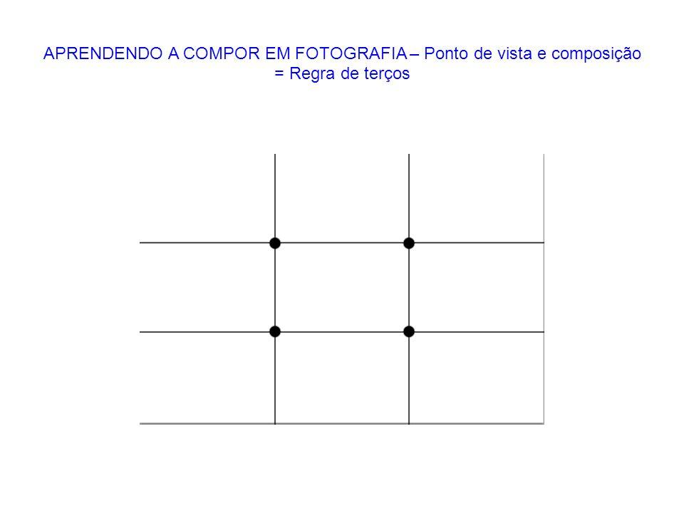 APRENDENDO A COMPOR EM FOTOGRAFIA – Ponto de vista e composição = Regra de terços