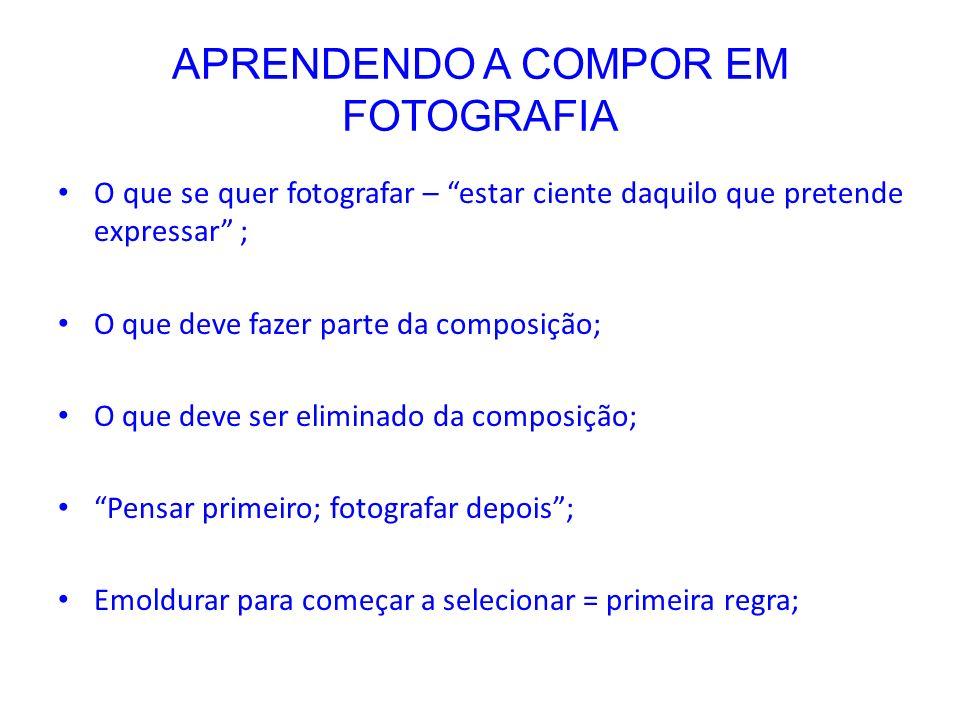 APRENDENDO A COMPOR EM FOTOGRAFIA