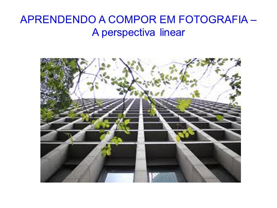 APRENDENDO A COMPOR EM FOTOGRAFIA – A perspectiva linear