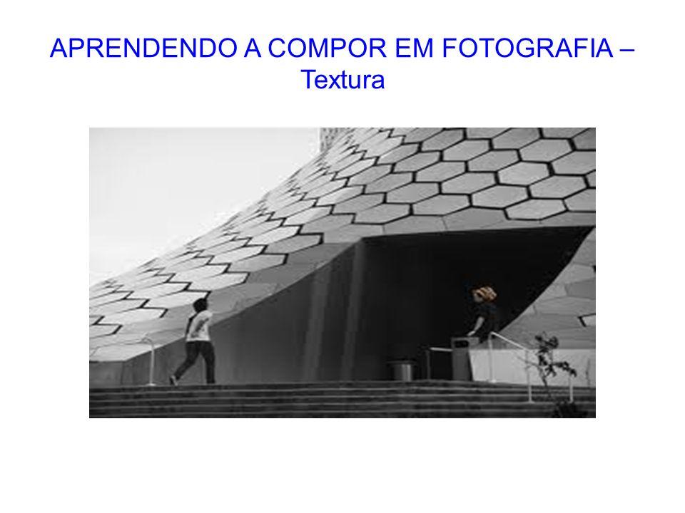 APRENDENDO A COMPOR EM FOTOGRAFIA – Textura