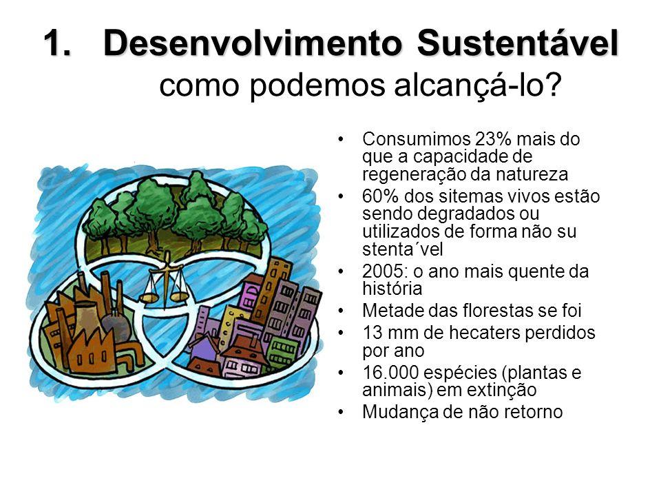 Desenvolvimento Sustentável como podemos alcançá-lo