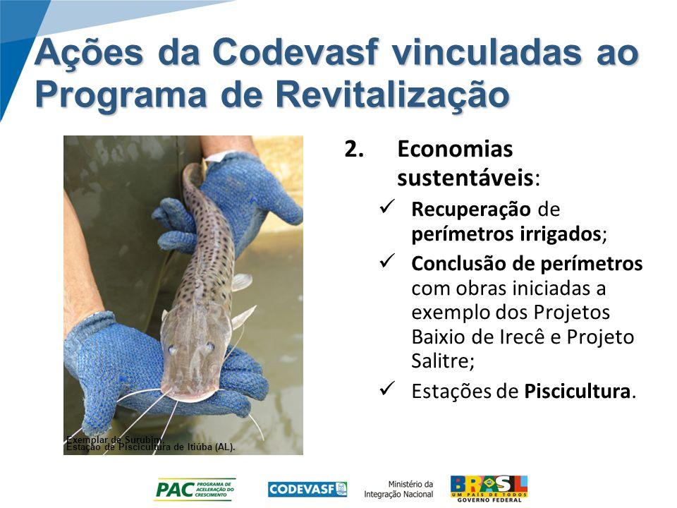 Ações da Codevasf vinculadas ao Programa de Revitalização