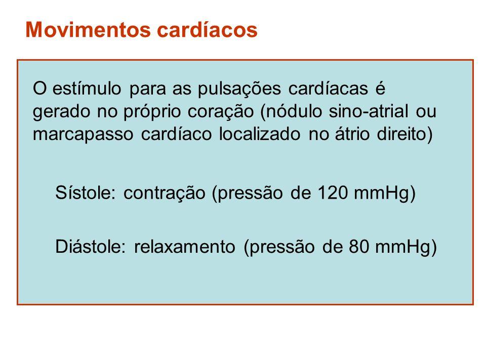 Movimentos cardíacos O estímulo para as pulsações cardíacas é