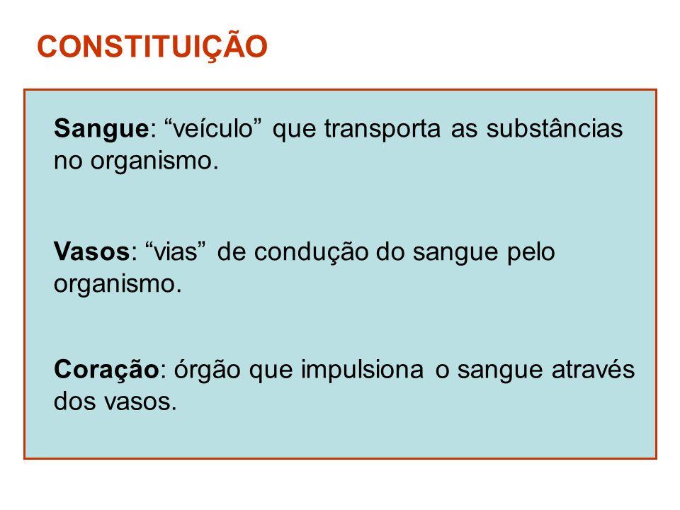 CONSTITUIÇÃO Sangue: veículo que transporta as substâncias