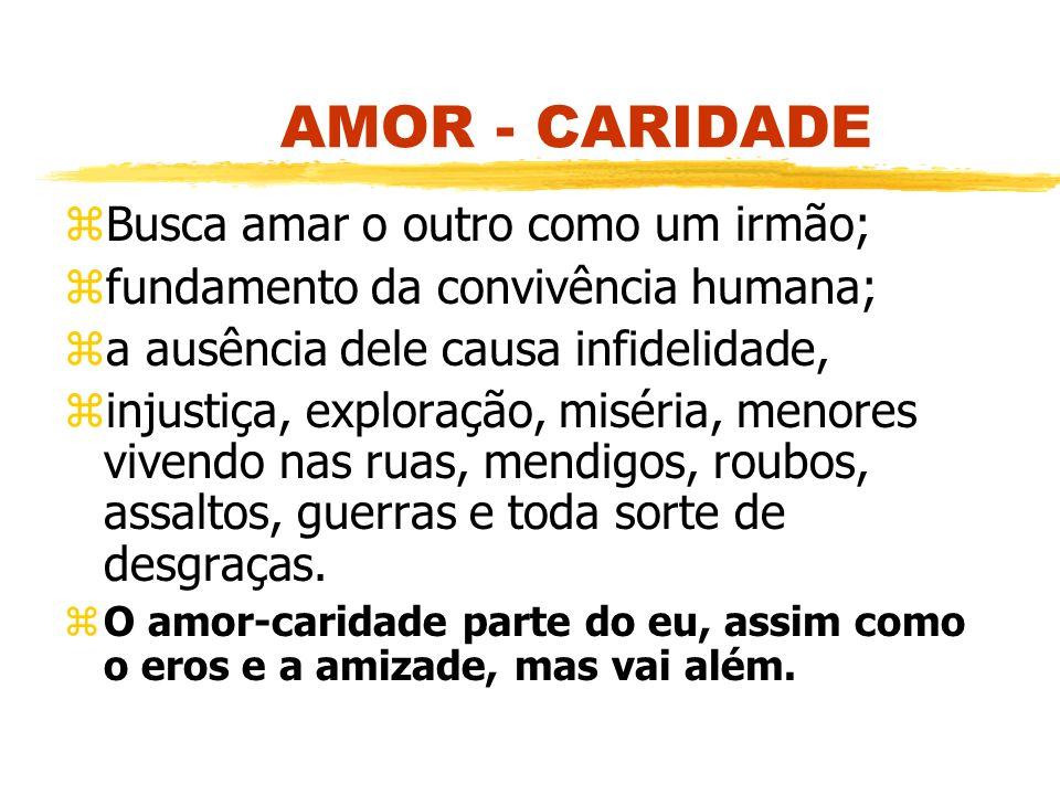 AMOR - CARIDADE Busca amar o outro como um irmão;