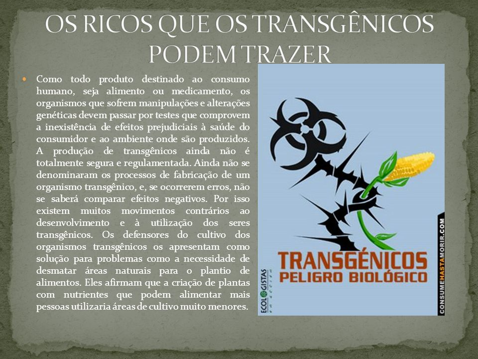 OS RICOS QUE OS TRANSGÊNICOS PODEM TRAZER