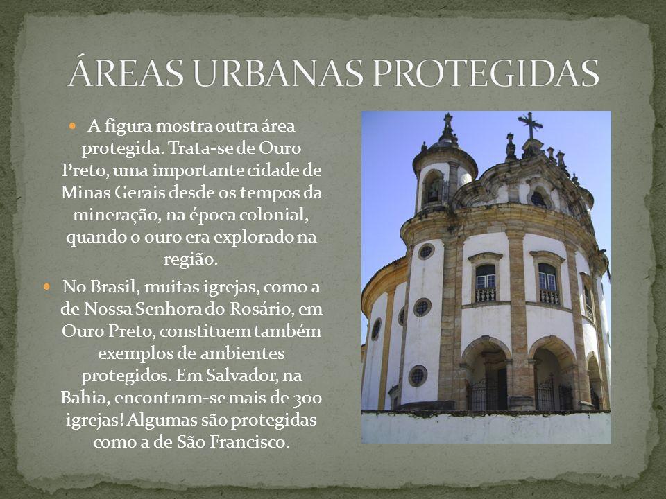 ÁREAS URBANAS PROTEGIDAS