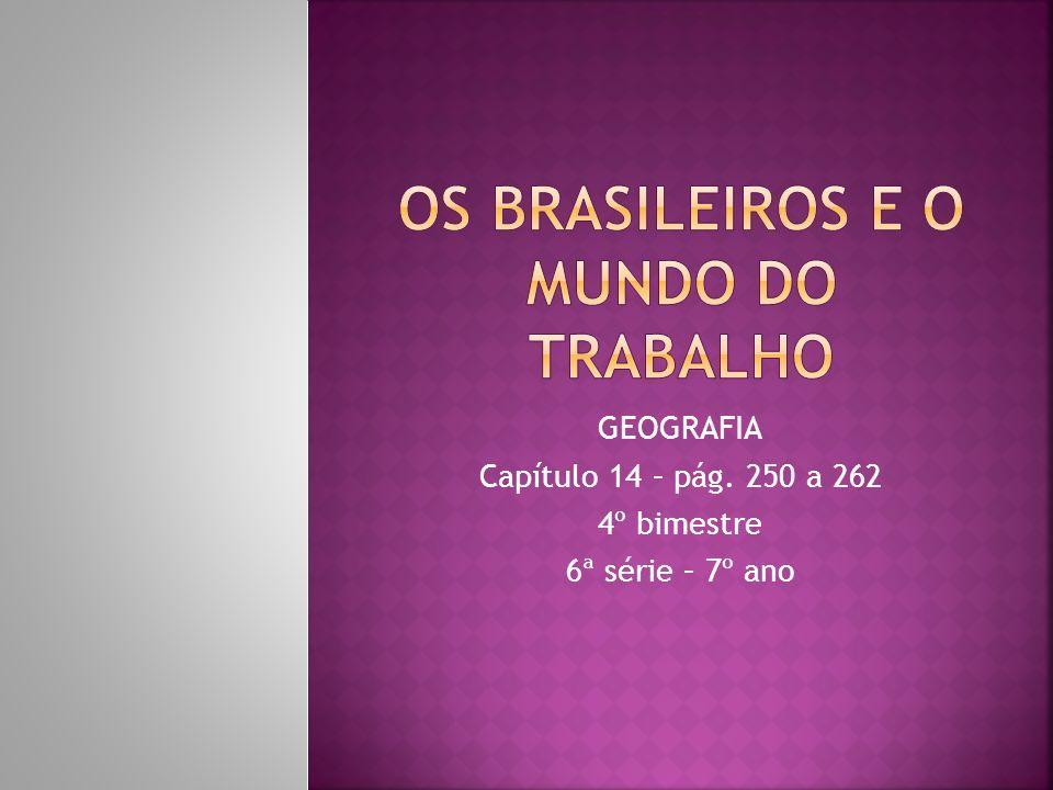 Os brasileiros e o mundo do trabalho
