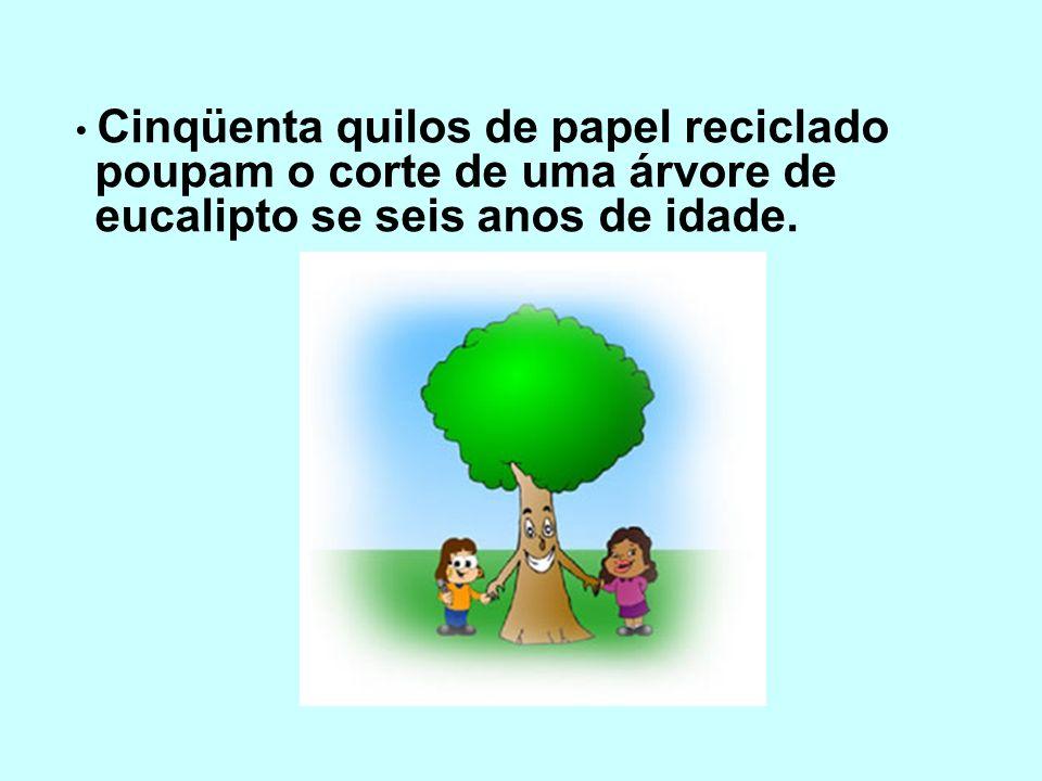 • Cinqüenta quilos de papel reciclado poupam o corte de uma árvore de eucalipto se seis anos de idade.