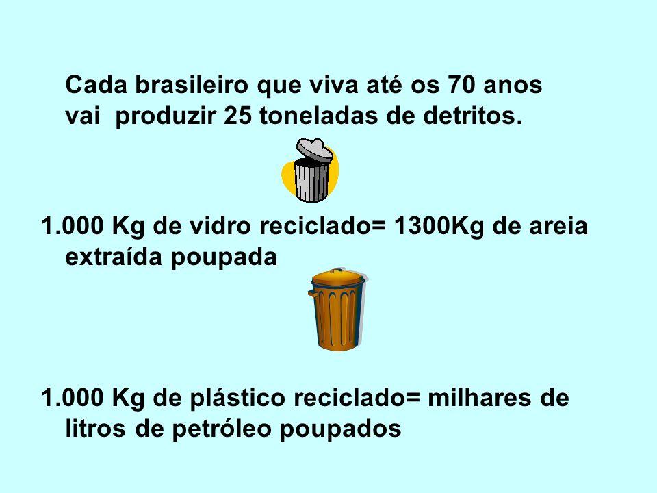 Cada brasileiro que viva até os 70 anos vai produzir 25 toneladas de detritos.