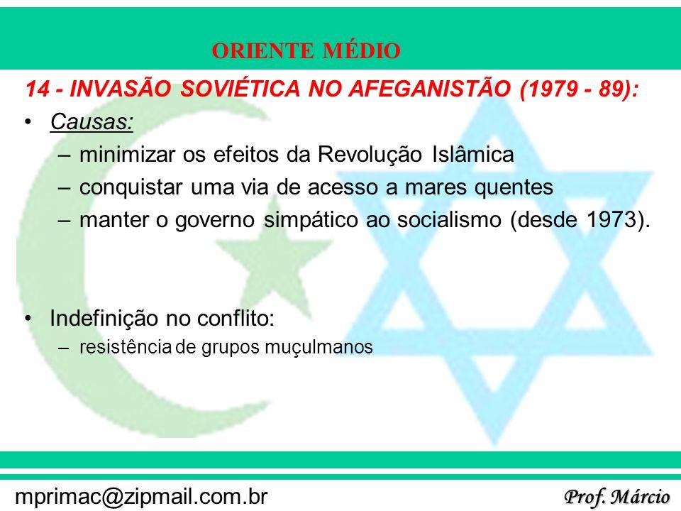 14 - INVASÃO SOVIÉTICA NO AFEGANISTÃO (1979 - 89): Causas: