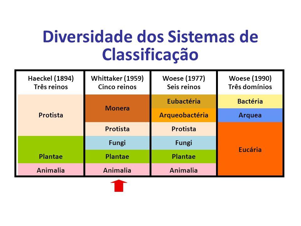 Diversidade dos Sistemas de Classificação