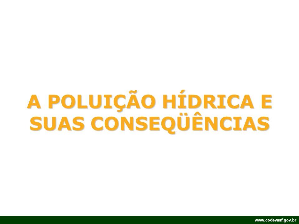 A POLUIÇÃO HÍDRICA E SUAS CONSEQÜÊNCIAS
