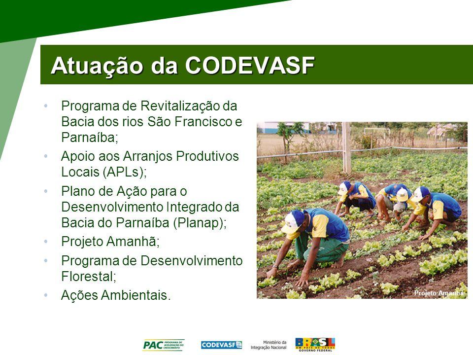 Atuação da CODEVASF Programa de Revitalização da Bacia dos rios São Francisco e Parnaíba; Apoio aos Arranjos Produtivos Locais (APLs);