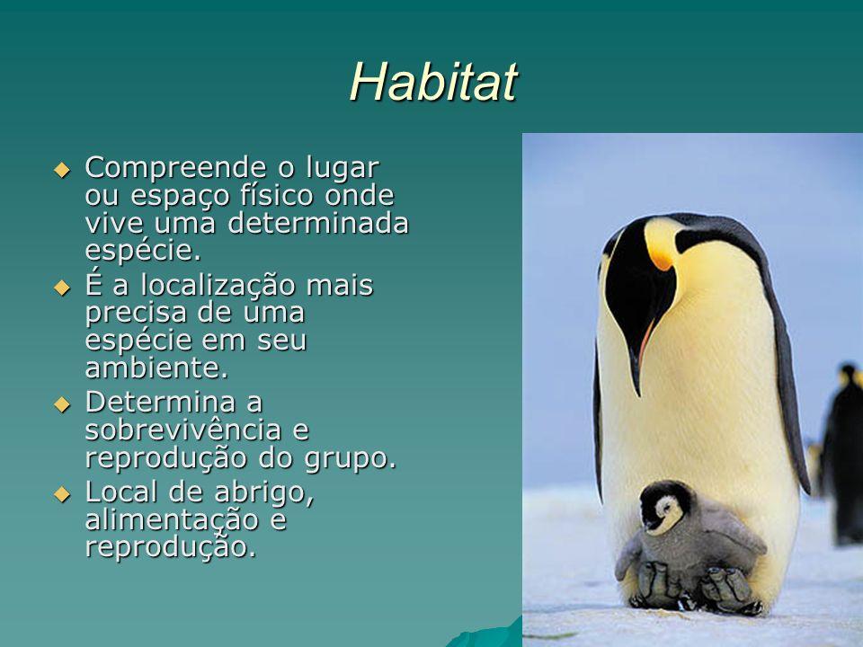 Habitat Compreende o lugar ou espaço físico onde vive uma determinada espécie. É a localização mais precisa de uma espécie em seu ambiente.