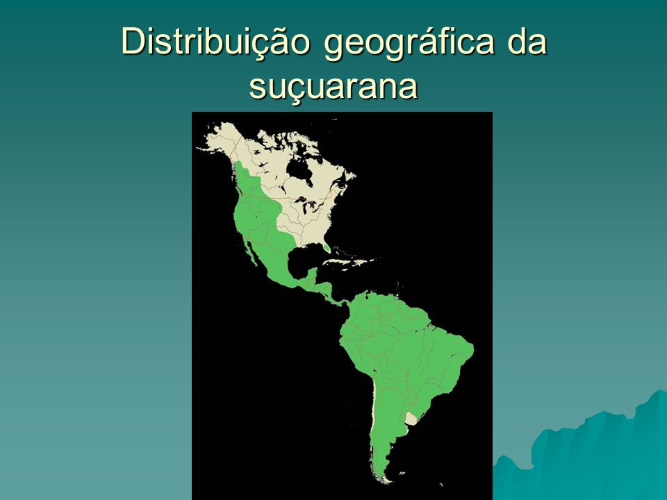 Distribuição geográfica da suçuarana