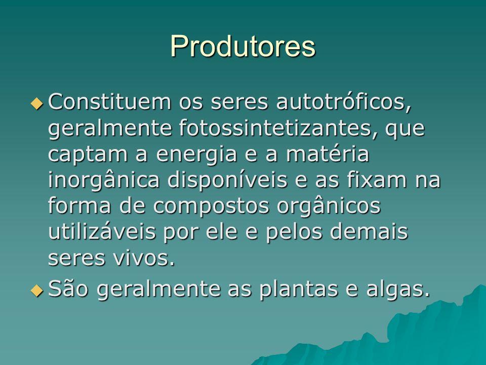 Produtores