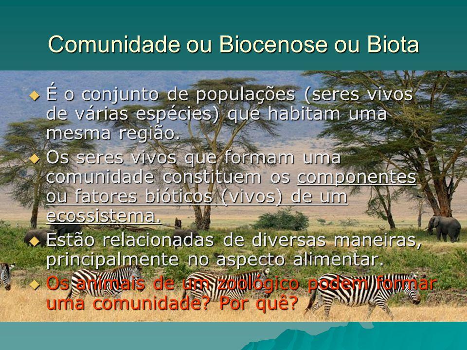 Comunidade ou Biocenose ou Biota