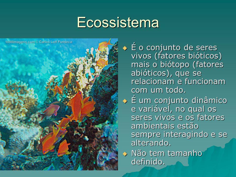 Ecossistema É o conjunto de seres vivos (fatores bióticos) mais o biótopo (fatores abióticos), que se relacionam e funcionam com um todo.