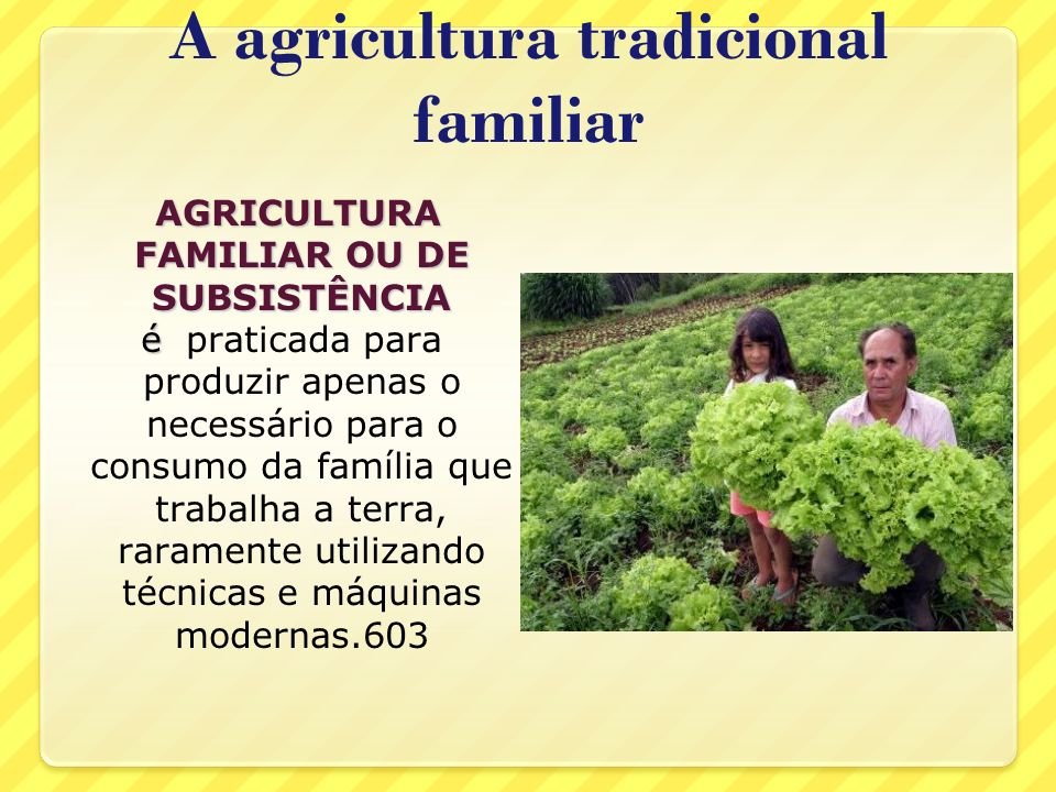 A agricultura tradicional familiar