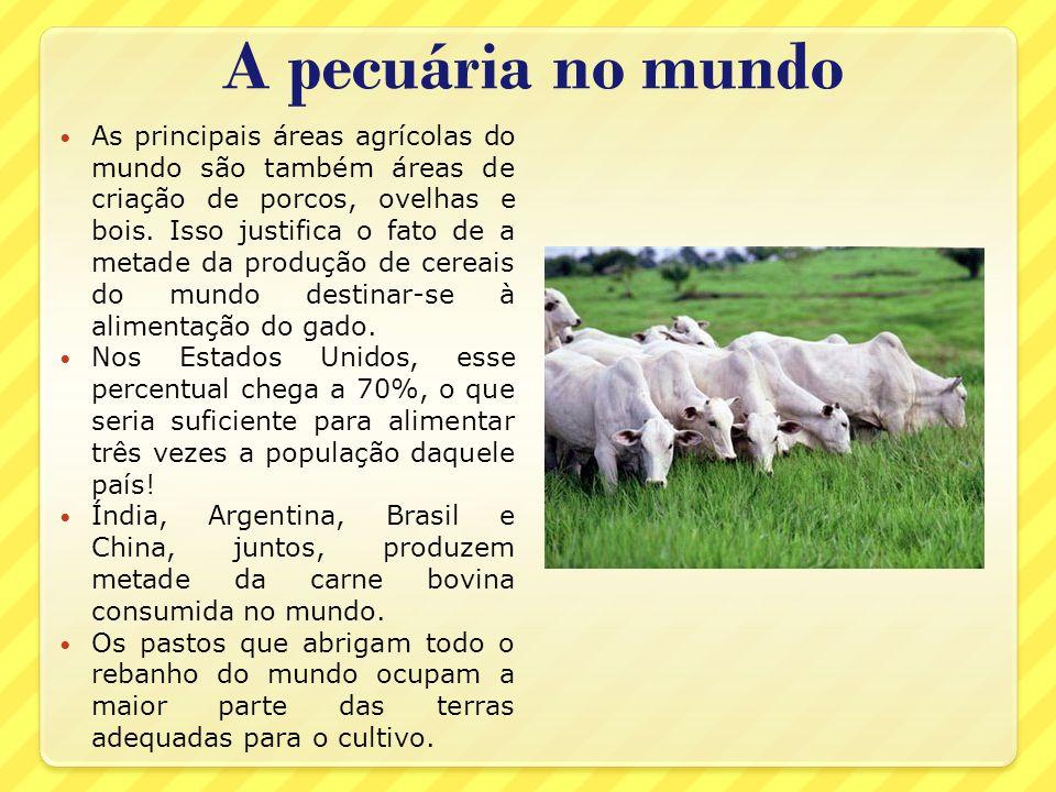 A pecuária no mundo