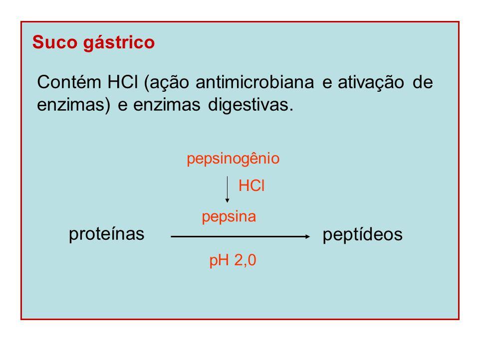 Contém HCl (ação antimicrobiana e ativação de