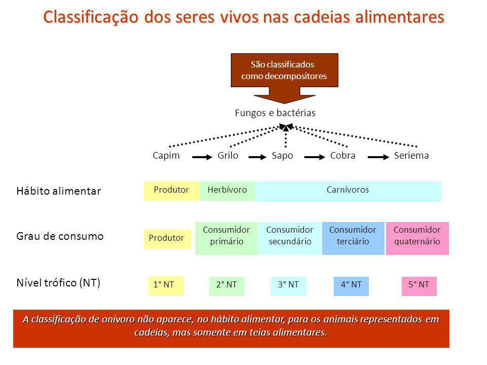 Classificação dos seres vivos nas cadeias alimentares