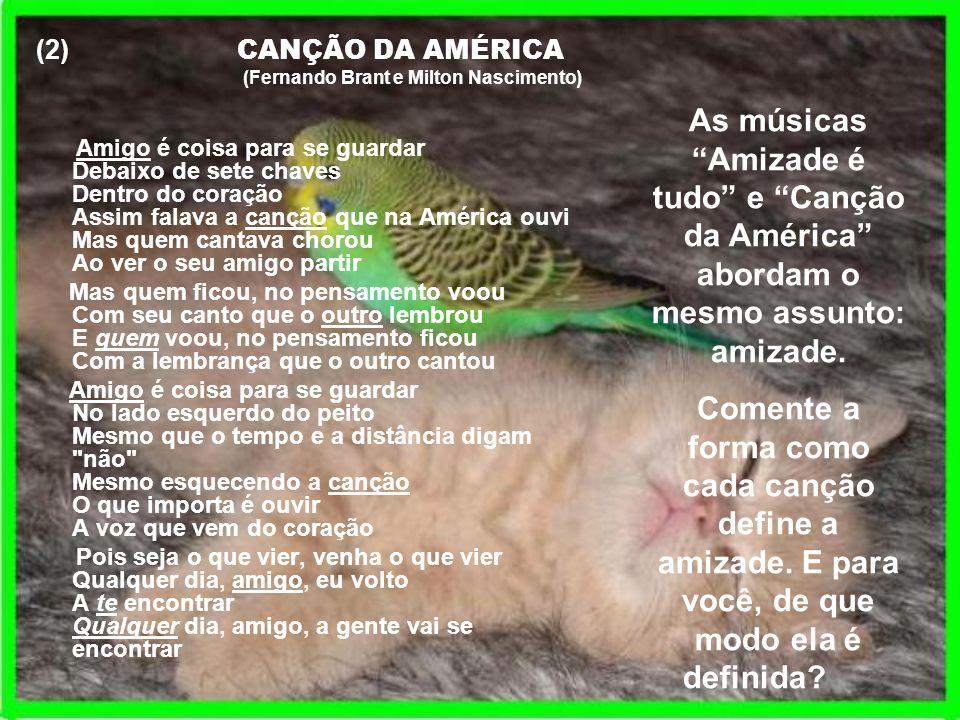 (2) CANÇÃO DA AMÉRICA(Fernando Brant e Milton Nascimento)