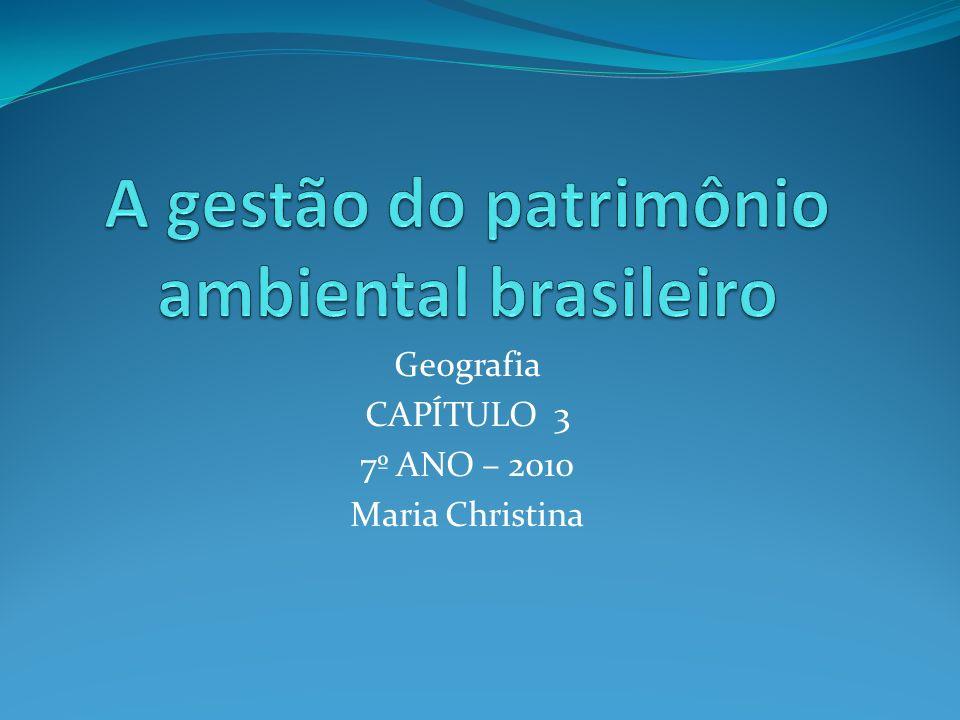 A gestão do patrimônio ambiental brasileiro