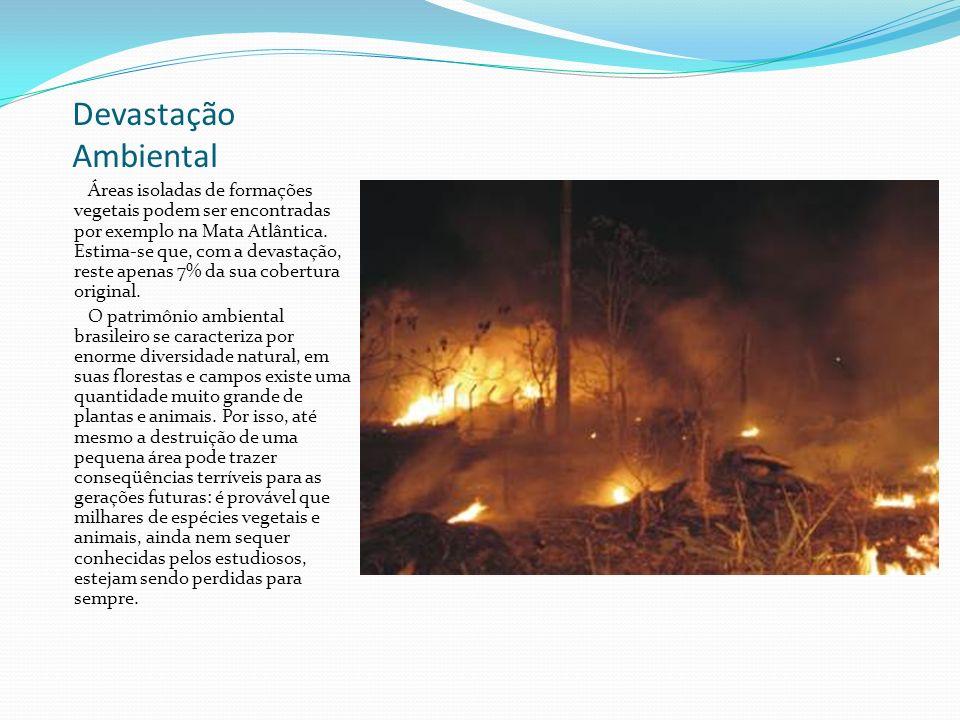 Devastação Ambiental